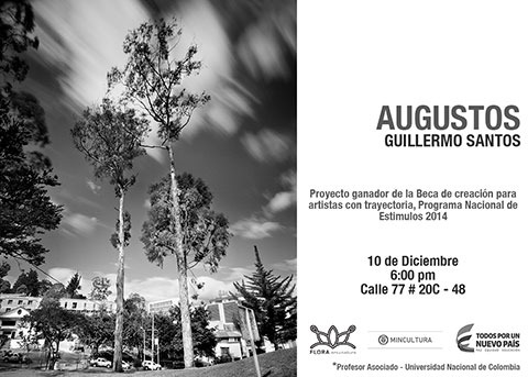 Medium_2015-augustos-guillermo-santos
